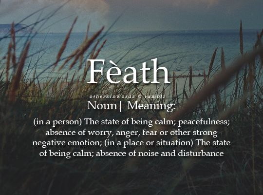 State of being calm, absence of disturbance