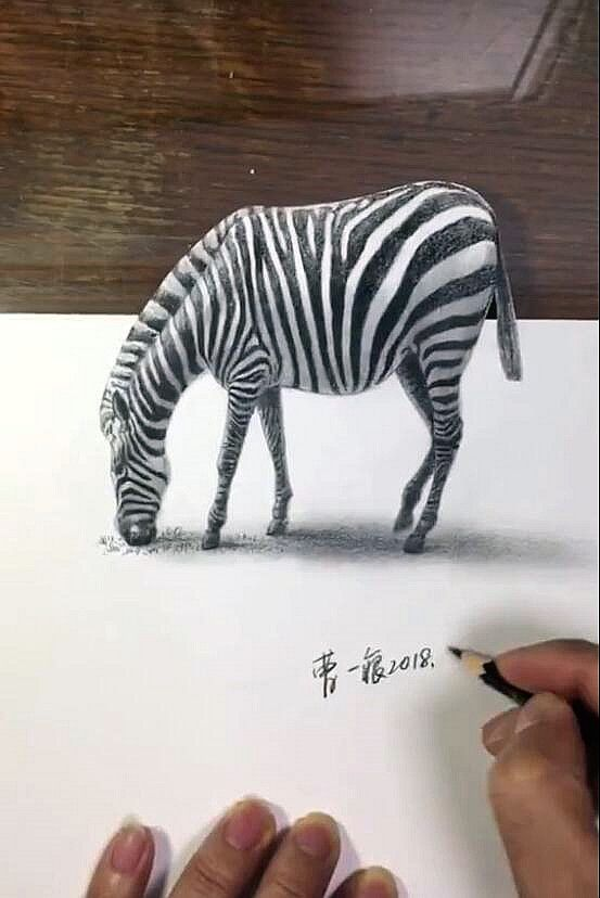 easy zebra drawing draw very drawings minutes learn simple