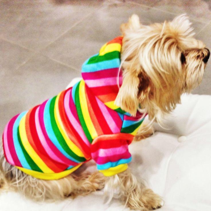 Rainbow Sweatshirt Gökkuşağı renklerinde Kapşonlu Sweatshirt http://kemique.com/page.php?id=25kemique petshop köpek malzemeleri kopek kıyafetlerı köpek kıyafetleri kopek elbıselerı köpek elbiseleri kopek elbise köpek elbise dog clothes köpek modası kopek modası dog fashıon köpek için kıyafet kopek ıcın elbise köpek için elbise köpek paltosu köpek montu köpek ceketi köpek tişörtü KÖPEK KIYAFETİ KÖPEK ELBİSESİ KÖPEK ÜRÜNLERİ KÖPEK ÜRÜNÜ KÖPEK GİYİM