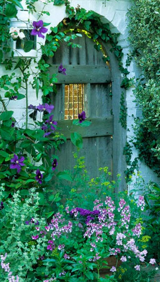 Purple clematis and green garden gate in Sussex, England • photo: John Glover on http://www.alamy.com/image-details-popup.asp?imageid={0C284975-2616-4C98-8D9C-DB32D2658DFA}