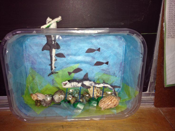 Ocean habitat diorama - grade 4 | Education | Crafts for ...