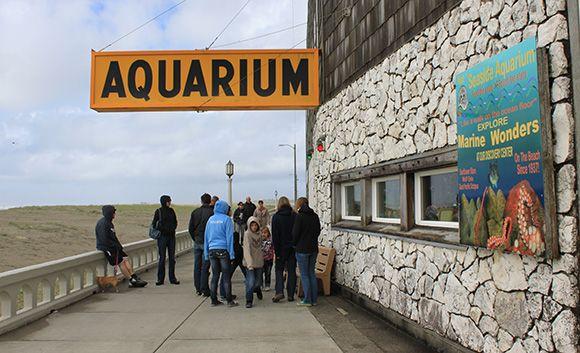 Seaside Aquarium, bike rentals, Haystack Rock and other family fun ideas in Cannon Beach & Seaside.