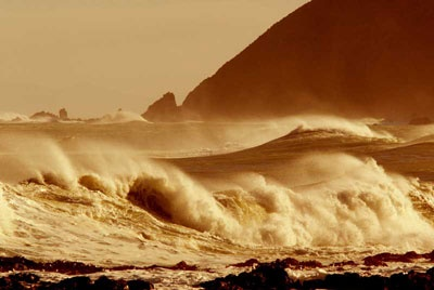 wellington south coast in wild weather