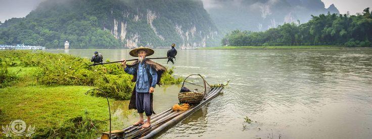 Известные в Китае выражения, связанные с чаем...  (ча юй фань хоу – в свободное время), то есть во время, остающееся после чаепития и вкушения пищи; (ча фань бу сы – чая и еды не хочется) – не думать о чае и еде (таким образом описывается беспокойство человека); (цу ча дань фань – простая грубая пища) – простая еда и скромный образ жизни; (нин кэ сань жи у лян, бу кэ и жи у ча – можно жить без хлеба три дня, но без чая не прожить ни дня) - это выражение, популярное в Синьцзяне, Тибете и…