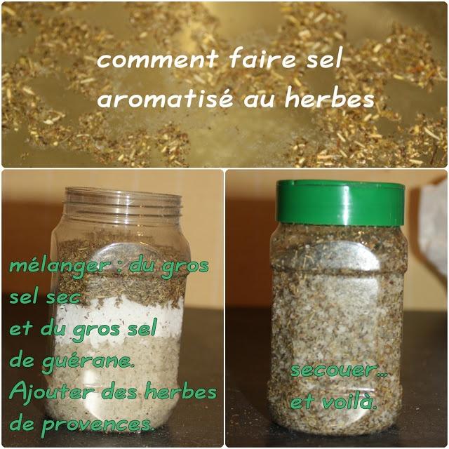 sel aromatisé maison