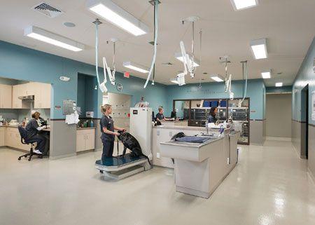 Frey Pet Hospital in Cedar Rapids, Iowa