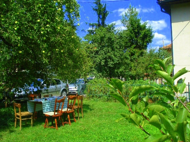 A Summer Table under Mount Igman, suburbs of Sarajevo - iphotography SilvanaMondo
