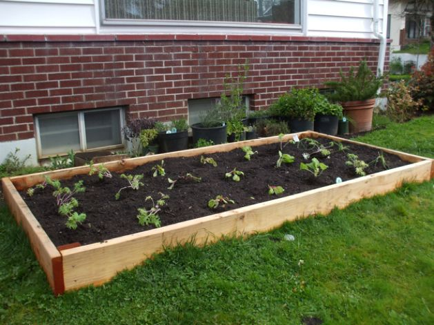 MAKE   Build Your Own Raised Garden Bed