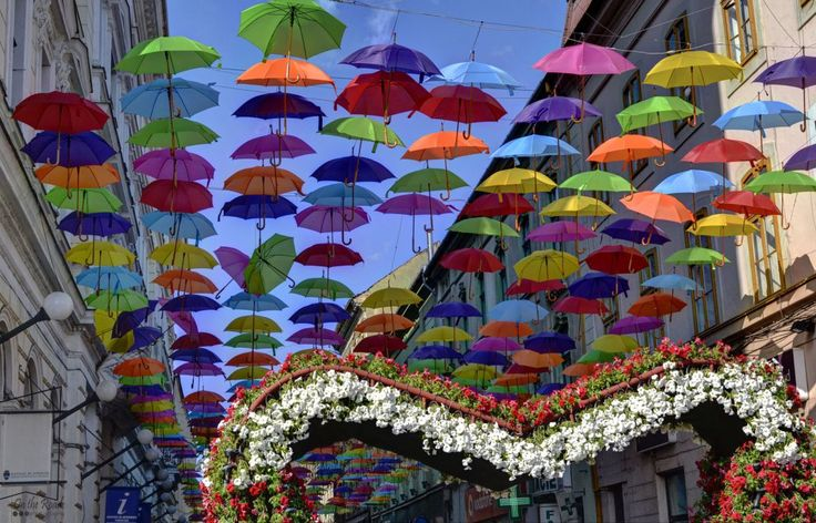 The colorful umbrellas in Timisoara's city center, with one of the many flower arches from Timfloralis.