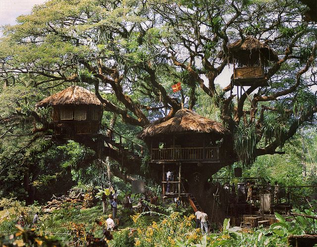 """Swiss Family Robinson Treehouse Movie Set    The original movie set for the Walt Disney picture """"Swiss Family Robinson"""" was constructed in the 200-foot spread of a living Samaan tree on the island of Tobago near Trinidad. Art director John Howell famously spotted it in 1958 through a gap in a fence at the corner of a cricket field just outside the town of Goldsborough."""