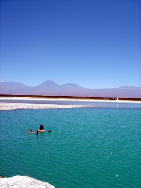 Cejar Lagoon, San Pedro de Atacama Chile