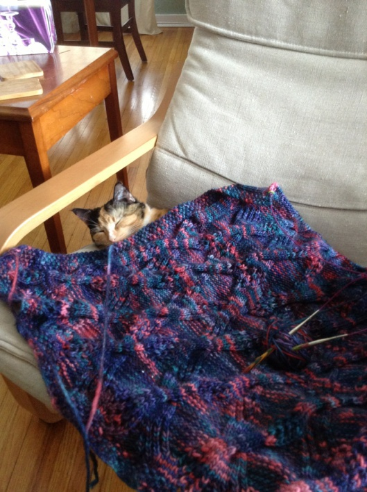 Miss Isobel and a half-knit blanket