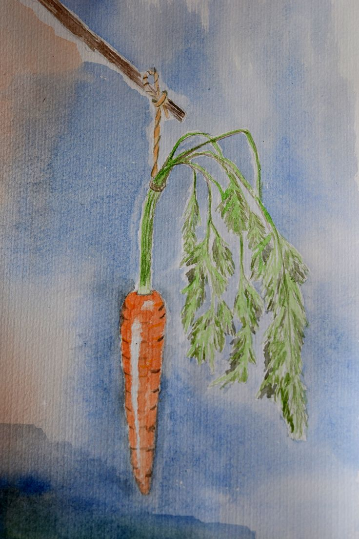 Carrot from the garden.