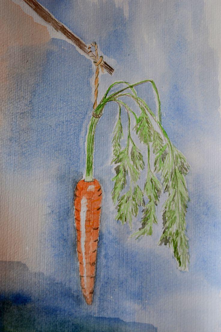 Carrot from the garden.