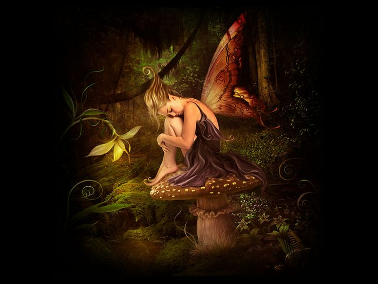 Fairy+Wallpaper | Night Fairy Wallpaper , here you can see Beauty ...