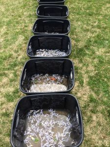 Earth Day Water Pollution Activity: A Cross Curricular Inquiry Study (Blog Post)  We kicked off Earth Day/Week by learning about the Great Pacific Garbage Patch, and trying out a water pollution experiment.