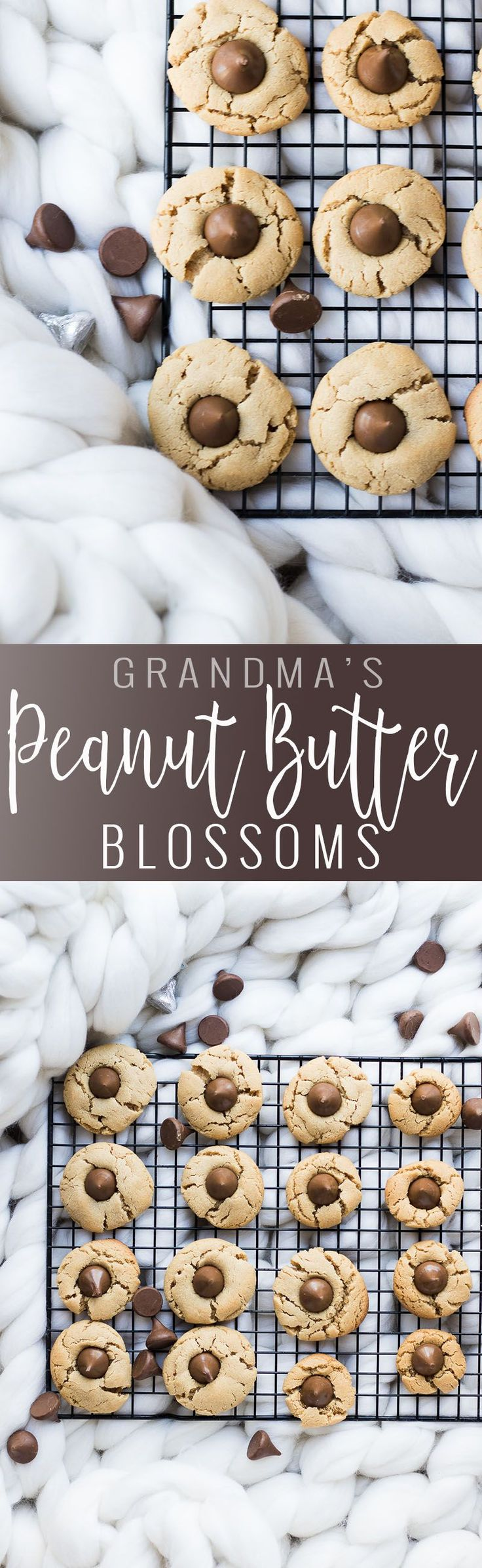 Peanut Butter Blossoms | homemade peanut butter blossom recipe | peanut butter cookie recipes | how to make peanut butter blossoms | homemade cookie recipes | cookie recipes homemade || Oh So Delicioso