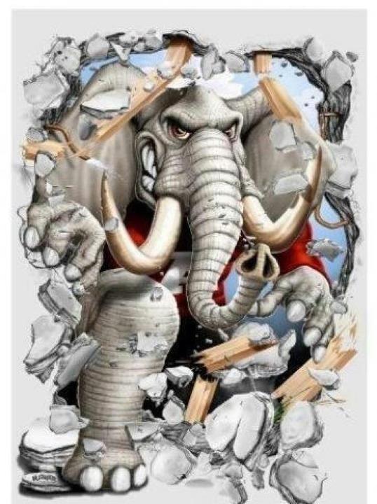 88 Best Roll Tide Roll Images On Pinterest