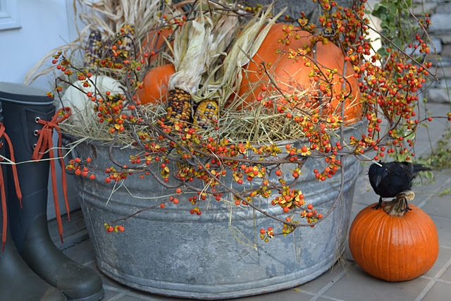 Old Wash Tub filled with autumn goodies...Indian corn, bittersweet, & pumpkins...