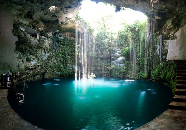 Mexican Cenotes which dot the Yucatan  limestone sinkholes with the cleanest bluest water ever