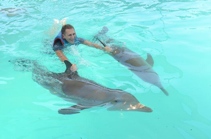 #bali #dolphins #swim #fun #sanur