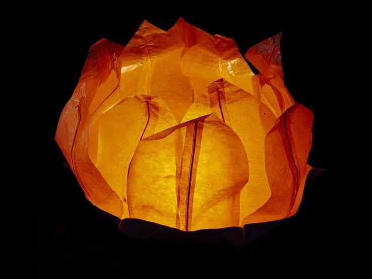 Ninfea Galleggiante di carta di riso arancione.Diametro 50 cm. Sono inclusi la candela, il manuale e il pennarello. Riutilizzabile, basta cambiare la candela.    Istruzioni, la preparazione è molto faci...
