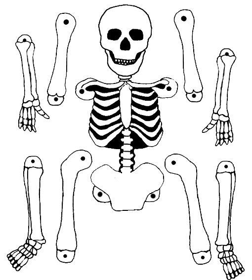 Un pantin squelette à imprimer et à fabriquer pour Halloween.