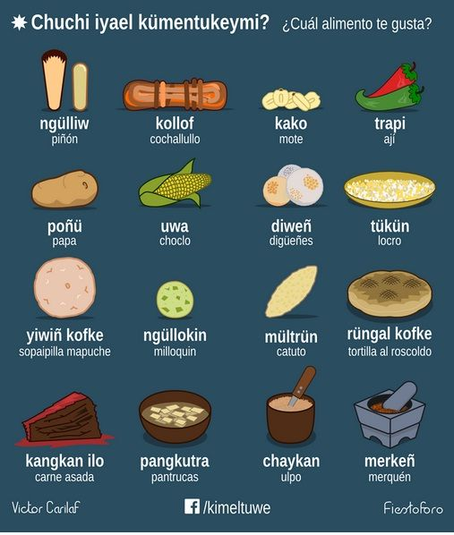 Chuchi iyael kümentukeymi? / ¿Cuál alimento te gusta?