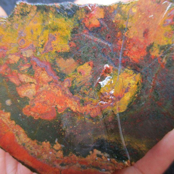 Ultra rare Slab. Exotic Sumringah Jasper Multi-Colored Slabs, East Java Jasper, Lapidary Materials