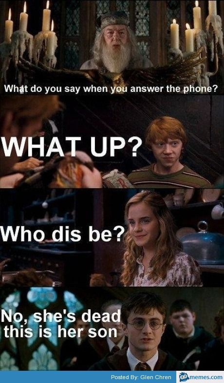Harry Potter No Parents Meme