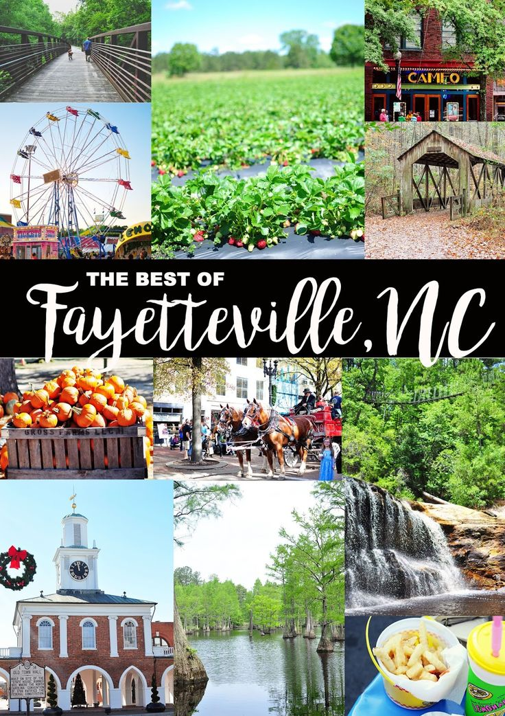 Little Sloth: The best of Fayetteville, NC  North Carolina travel post