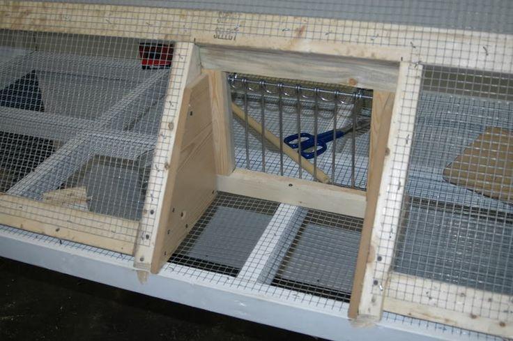 My Loft......... - Pigeon-Talk