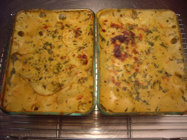 35 best protective diet images on pinterest vegan recipes diet cheezy scalloped potatoes recipe the way to a mans heart is with potatoes this recipe is your ticket in these creamy saucy potatoes will leave any man forumfinder Image collections
