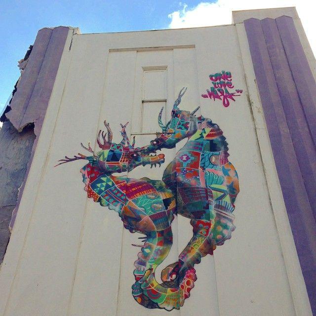 Louis Masai - seahorses - New Orleans