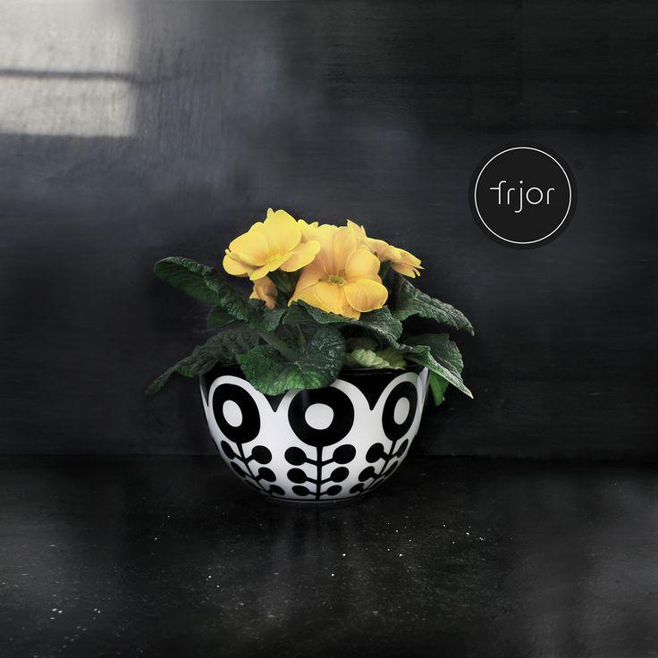 frjor . bowls . black . white  www.frjor.com