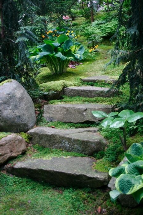 """I love this all the way, but I live in a much drier, hotter, sunnier location. I love the color and style of stone steps, love the shades of greens and the few scattered flowers. Even the coniferous trees in this picture are brighter green, looking more """"you're yang and alive"""" than most pine trees."""