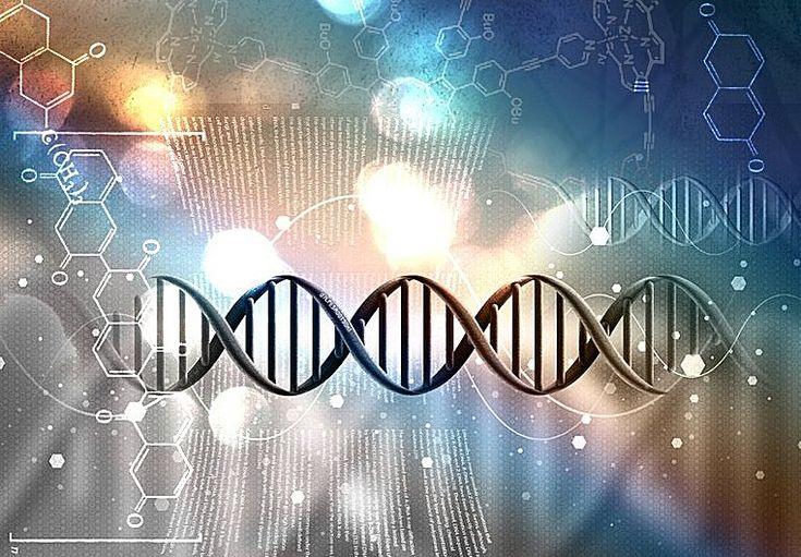 Junk DNA And Human Consciousness