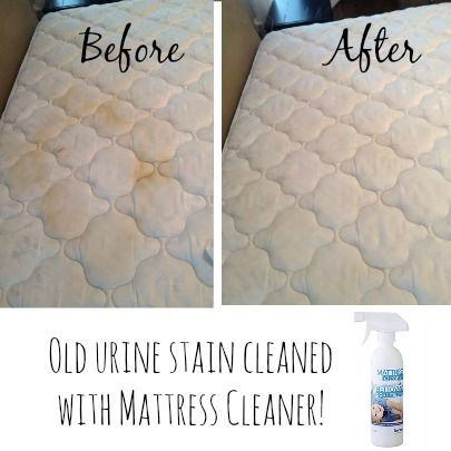The Mattress Cleaner Is One Of My Favs If You Have Allergies Or Asthma