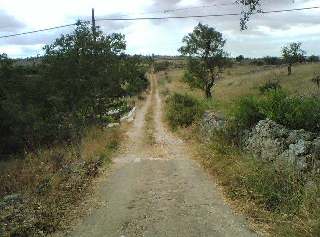 """INFANZIA I - Zona QUITE, 13.07.2014, ore 11.20. Il sentiero """"infinito"""", aspro, e il silenzio antico, """"materno"""", di Nonno Francesco (1955-1965)"""