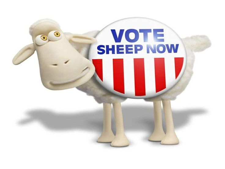 serta sheep mattress elkins wv