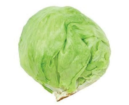"""Germ 4-10 days Heirloom 1894 Don't think what goes by the generic term """"Iceberg"""" in the supermarket. Per 1936 James Vick seeds, """"A curled heading plant of medium size and wavy fringed leaves, which en"""