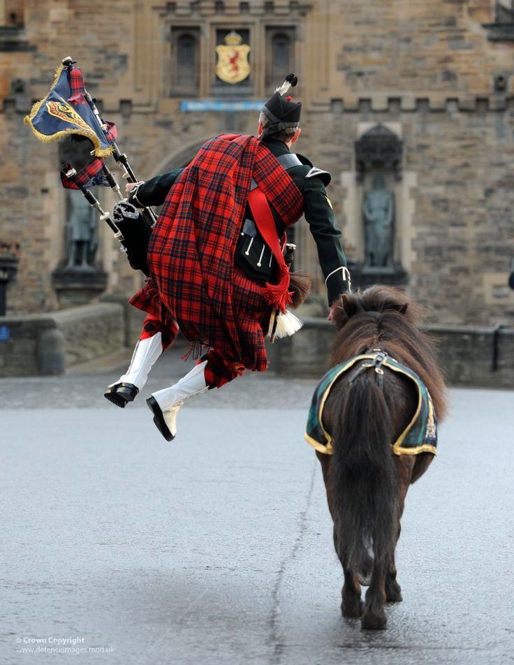 Jumping the horse in full regalia. Watch the pipe band, the fling and now all the horses parade around the castle