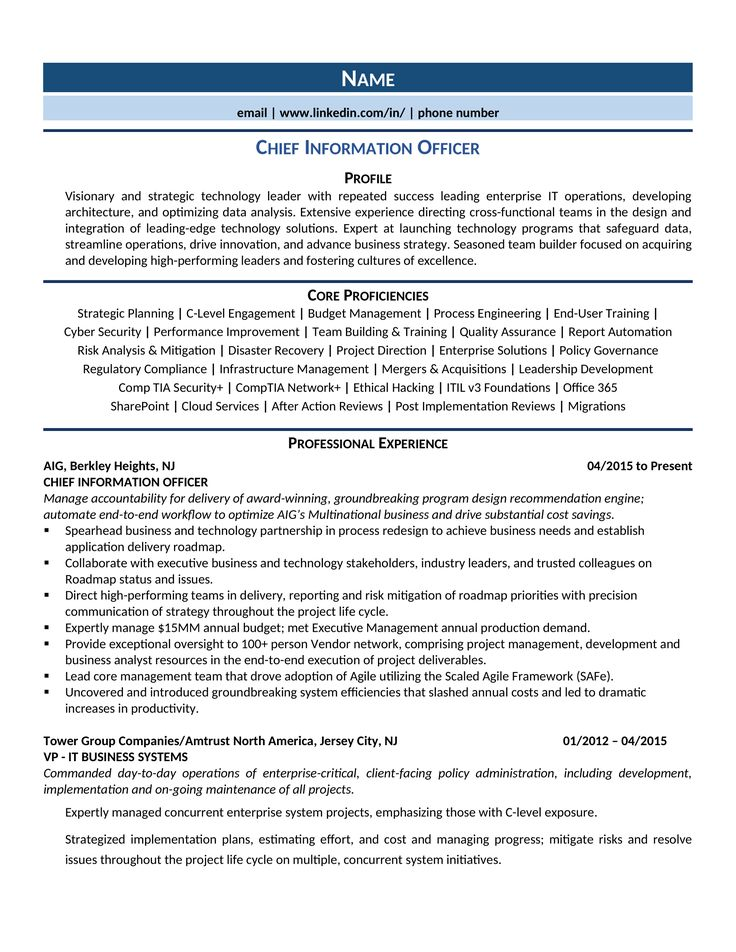 Chief information officer cio resume samples template