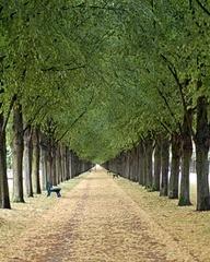 Park in Hanover Germany