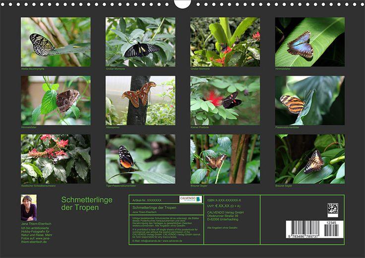 """Tier-Posterbuch """"Schmetterlinge der Tropen"""", Index"""