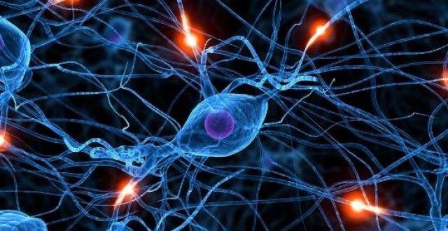 La lamentela danneggia i neuroni