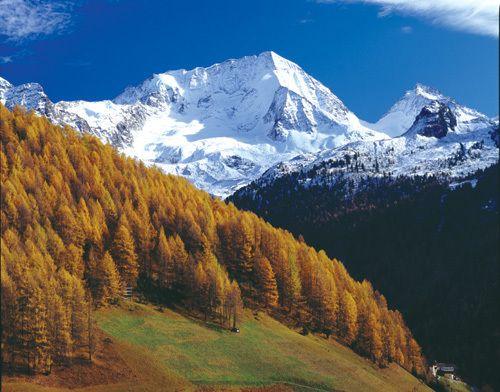 Rein in Taufers. Link zur Tour: http://www.outdooractive.com/de/bergtour/tauferer-ahrntal/prettauer-almwanderung/1538650/#axzz2AO4r0JtT    Dolomiten, Südtirol, Berge, Herbst, Landschaft