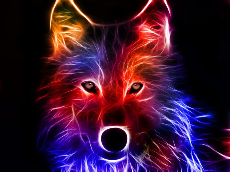 Abstract Wolf Artwork.