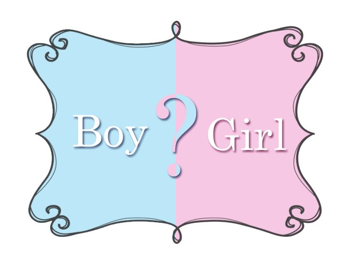 In ancient Greece, orchids were associated with manhood. In fact, Greek women b …   – Baby Showers
