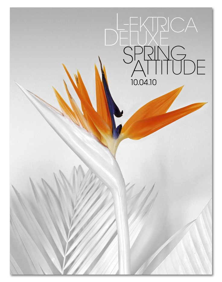 L-Ektrica Deluxe Spring Attitude 2010 // Artworks ------------------ Graphic Design: Lord Z